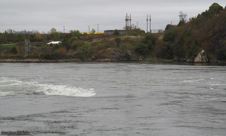 Reversing Falls Currents