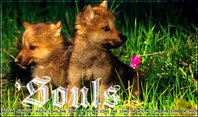 [Image: Souls_406x240_01.jpg]