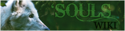 [Image: soulswiki_400x100_2.png]